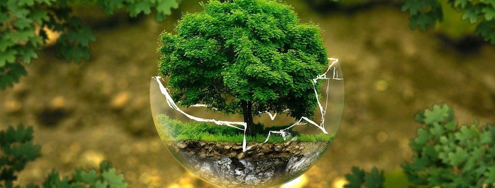 La notation ESG des ETF progresse