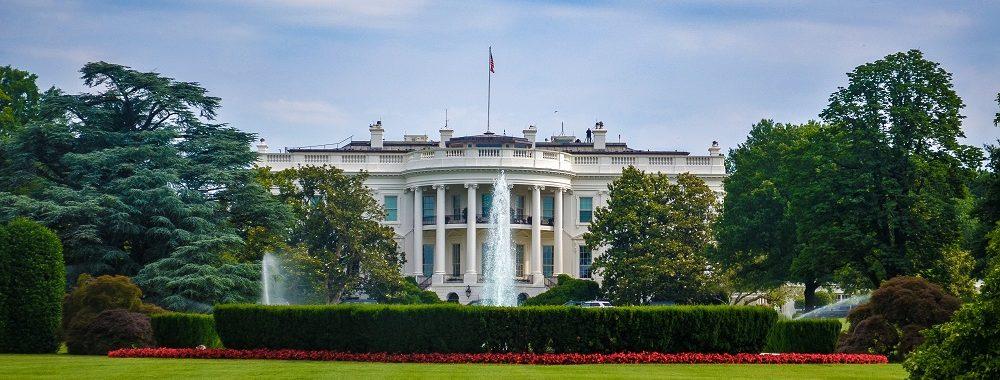 """""""Donald in da House"""", la téléréalité du président Trump"""