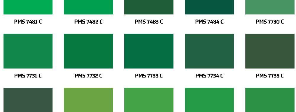 Rupture de stock de peinture verte