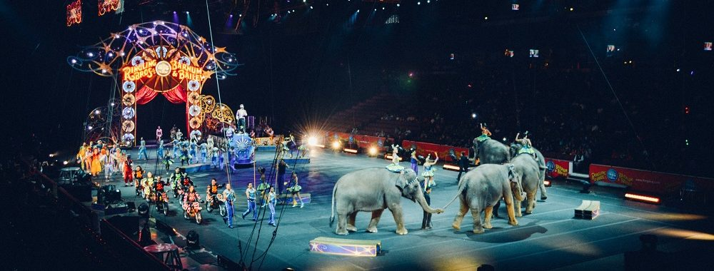Le grand cirque mondial va reprendre, comme avant mais en pire