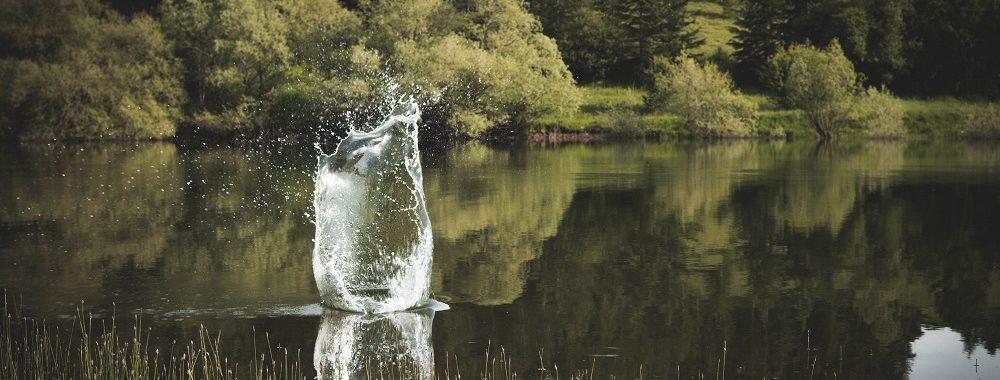 Investir dans l'eau : un secteur qui brille par sa résilience