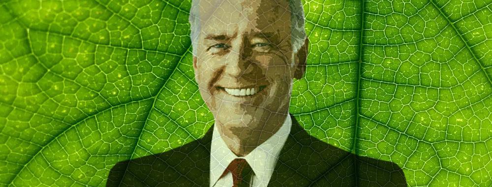 Joe Biden, quelles propositions pour la transition écologique?