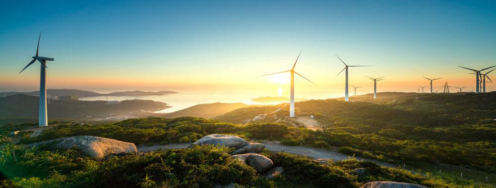 Les technologies vertes: quels effets sur le climat et sur le capital naturel?