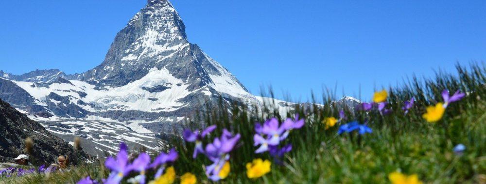 L'indice élargi du marché suisse enregistre des résultats supérieurs à la moyenne