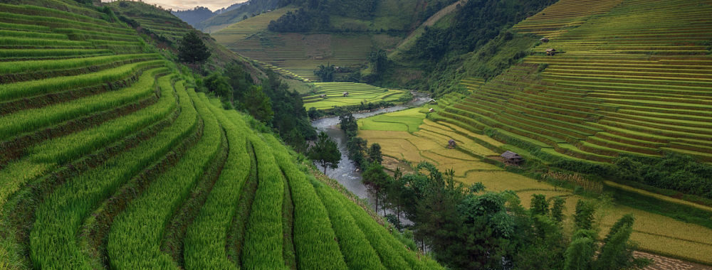 Entretien avec Dhananjay Phadnis & Flora Wang, gérants du FF Sustainable Asia Equity Fund