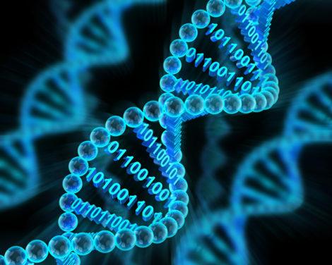 L'ADN d'une gestion de fortune réussie