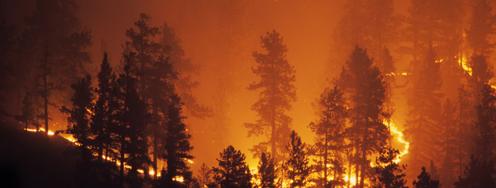 Face à l'urgence climatique, le secteur de l'investissement peut faire la différence