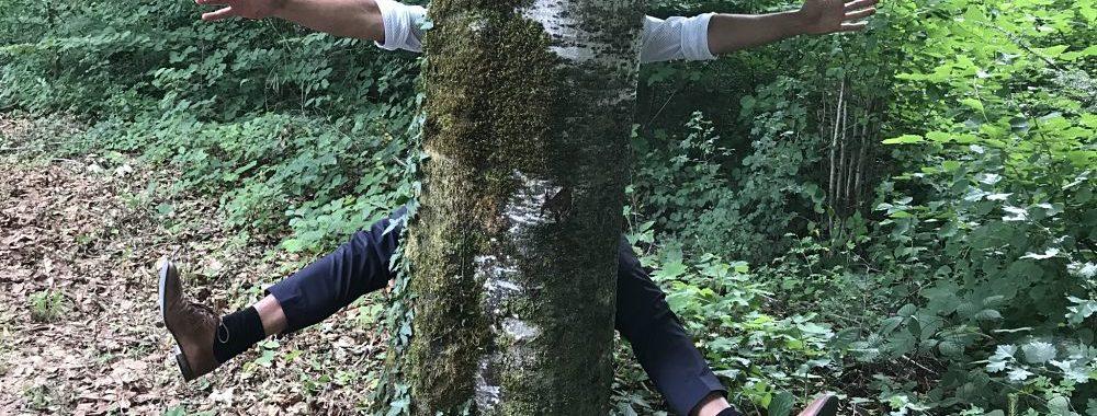 Progrès technique : l'arbre qui cache la forêt?
