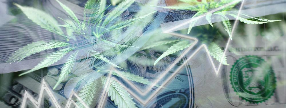 Les perspectives du cannabis pour 2020: périls et occasions en matière de placements