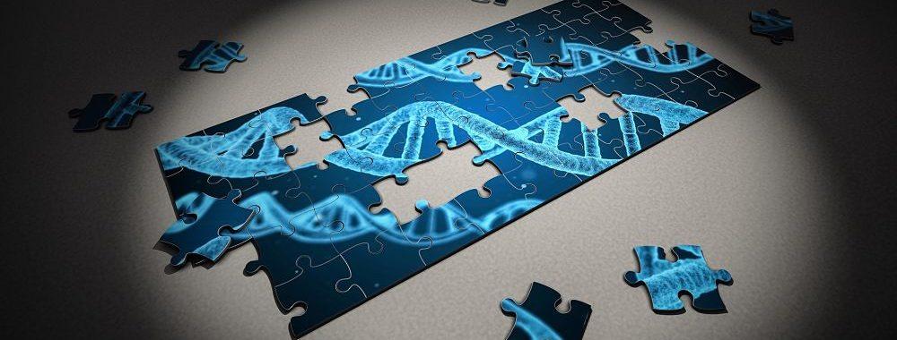 Le diagnostic: un besoin d'innovation considérable